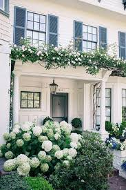 White Hydrangeas 17 Dreamy Hydrangea Gardens That Are Giving Us Major Inspiration