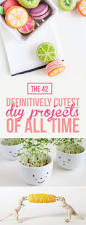 diy projects the 42 definitively cutest diy projects of all time