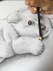 drawing classes in noida