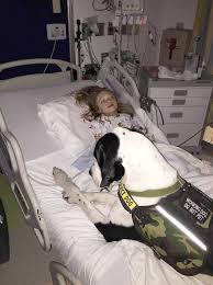 Great Dane Home Decor Bella Burton Loves Her Great Dane Service Dog For Morquio Syndrome