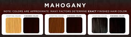 mahogany hair color chart mahogany henna color makedes com