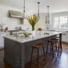 kitchen cabinet design houzz 75 beautiful black kitchen pictures ideas april 2021