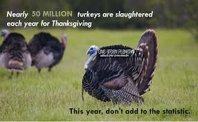 funny pictures thanksgiving turkeys 50 million reasons to not eat turkey this thanksgiving one green