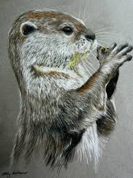 river otter by chalkycanvas on deviantart otters pinterest