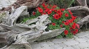 Creative Garden Decor Brilliant Art Garden And Decor 11 Examples Of Amazing Garden Art