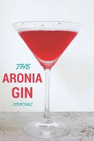 martini png the aronia gin cocktail northwest edible life