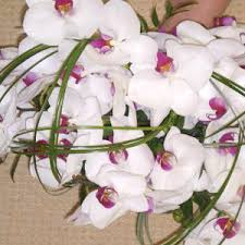 wedding flowers orchids orchid wedding flowers make a lovely impression for your wedding