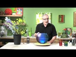 Vase To Vase Florist How To Arrange Flowers Paint A Glass Vase With Spray Paint Youtube