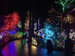 Portland Christmas Lights Christmas Festival Of Lights At The Grotto Aca Oregon