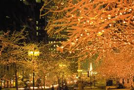 Christmas Lights Festival by 20 Things To Be Thankful For This Holiday Season