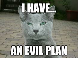 Evil Cat Meme - i have an evil plan evil plan cat quickmeme