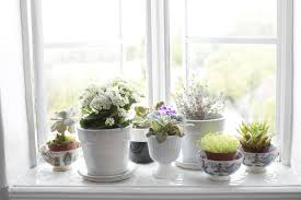 decoration tips for the windowsill u2013 inspiration for the