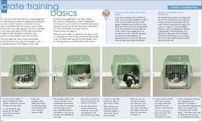 crate training crate training basics bark machine