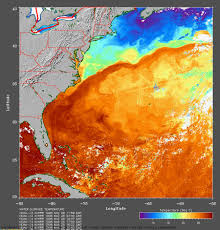 Map Of The Gulf Stream Journey North Monarch Butterfly