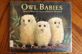 thanksgiving crafts for infants owl babies