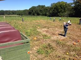 Backyard Treasures Dothan Al 10 Best Pumpkin Patches In Alabama