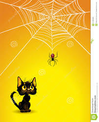 black cat halloween background halloween spider web and black cat background royalty free stock