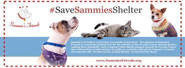 anyone in nevada county looking to build an affordable cabin sized sammie s friends home facebook