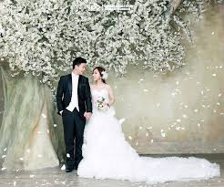 korean wedding gown dress korean wedding photo ido wedding
