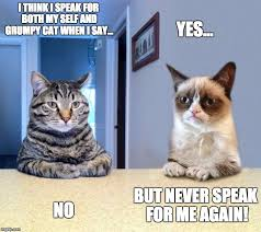 Grumpy Cat Yes Meme - two grumpy cats imgflip