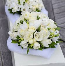 wedding flowers auckland white and bridal party bouquets flower wholesalers auckland