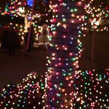 christmas lights san diego point loma garrison street christmas lights 82 photos 10 reviews