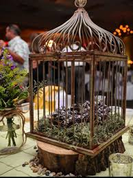 Decorative Bird Cages For Centerpieces by 26 Best Bird Cages Images On Pinterest Marriage Birdcage Decor