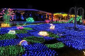 garden d u0027lights holiday light show at bellevue botanical gardens