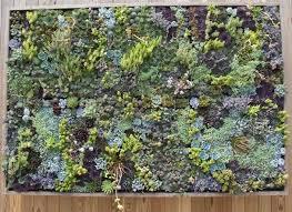 How To Make Vertical Garden Wall - diy vertical garden lives and breathes gardening wonderhowto