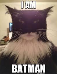 I Am Meme - i am batman funny cat meme funny website