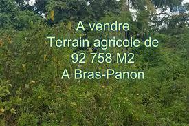 chambre d agriculture vend vente terrain bras panon a vendre immense terrain agricole de