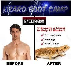 Yeet Meme - yeet is a dead meme dank memes amino