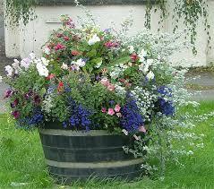 the botanico whiskey barrel planter iimajackrussell garages