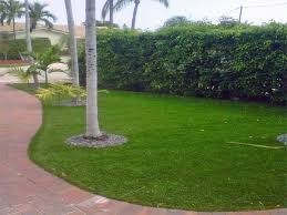Florida Garden Ideas Synthetic Turf Goldenrod Florida Garden Ideas Front Yard