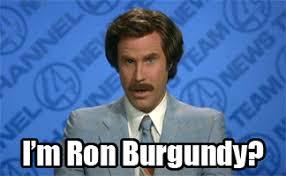 Ron Burgundy Meme - the human torch was denied a bank loan run salt run