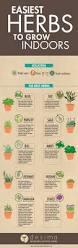 best 25 indoor farming ideas on pinterest growing plants