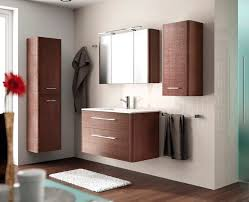 Modern Bathroom Wall Cabinets Magnificent Storage Cabinets Ideas Bathroom Wall Cabinet And