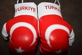 turkey turkish flag mini boxing gloves ornament new ebay
