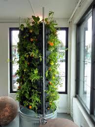 remarkable indoor vertical garden with gray metal vat designed for