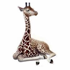 giraffe photo statuettes cutouts sculptures zazzle