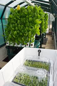 our 60º vertical greenhouse food forever farm system with