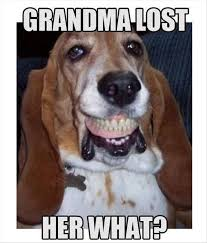 Dog Teeth Meme - basset hound teeth meme funny stuff pinterest hounds tooth