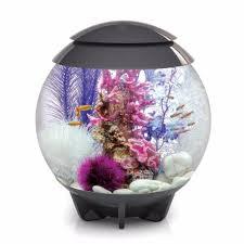 biorb halo 30l 8g all in one acrylic aquarium kit w multicolor