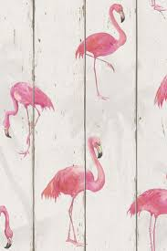 Bedroom Wallpaper Texture Top 25 Best Flamingo Wallpaper Ideas On Pinterest Flamingo