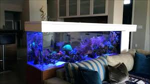 Aquarium Bed Set Wonderful Aquarium Bedroom Images Best Ideas Exterior Oneconf Us