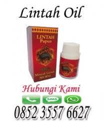 minyak oil lintah papua asli murni sudah terkenal secara turun