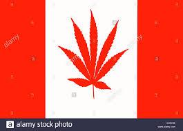 Canadian Flag 1960 Drug Usage Stock Photos U0026 Drug Usage Stock Images Alamy