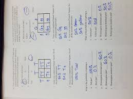 solving heredity problems lab answers 28 images 11 best images