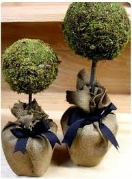 Mantel Topiaries - 729 best decorate with topiaries images on pinterest topiaries