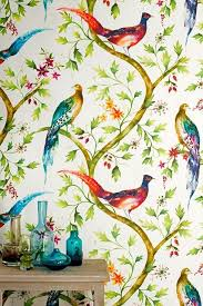 wallpaper with birds exotic birds wallpapers awesome exotic birds pictures and